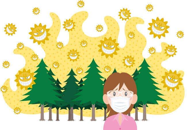 花粉症でアレグラ