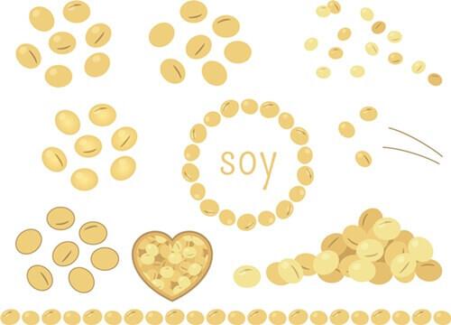 節分豆まき種類